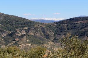 Vistas de Sierra Nevada desde el Puerto Villanueva