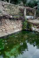 Fuente Uñana