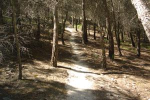 Sendero Hoyo de la Sierra